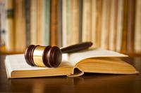 törvény jog