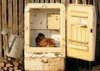Hűtőgép - csere augusztusban !